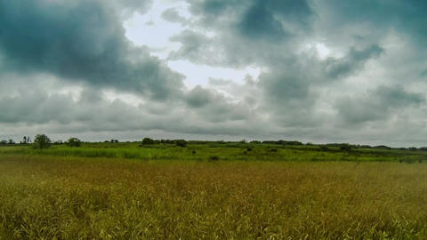 Dark Clouds Above Field stock footage