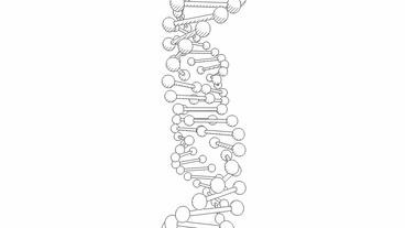 3D DNA string sketch rotation Stock Video Footage