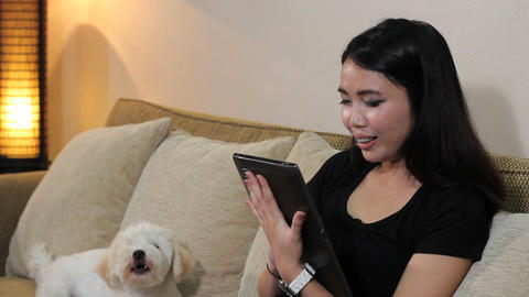 Asian Woman Talks On PC Tablet With Dog Stock Video Footage