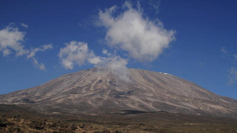 Tilt up to Kilimanjaro from plain Stock Video Footage
