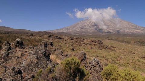 Wide shot of Kilimanjaro with trekker walking into frame Stock Video Footage