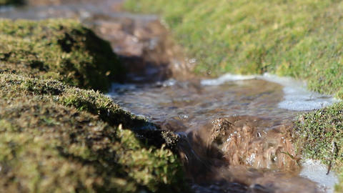 Bubbling brook outside village Stock Video Footage