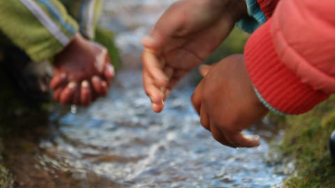 Close up of children's hands in brook Footage