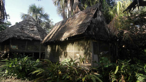 Jungle retreat pan Stock Video Footage
