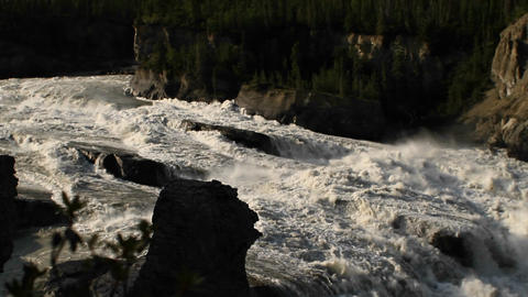 Focus shift from plant to rapid river Footage