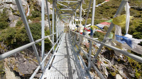 Bridge crossing Footage