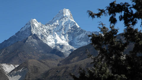 Glide of Ama Dablam from behind trees Stock Video Footage