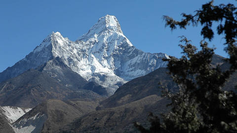 Glide of Ama Dablam from behind trees Footage