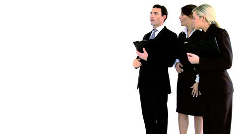 Executive business team isolated on white Stock Video Footage