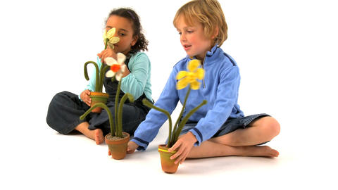 African american girl and blonde boy smelling at the flowers Stock Video Footage