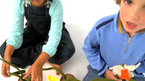 African american girl and blonde boy playing with flowers and screaming, motio jib Footage