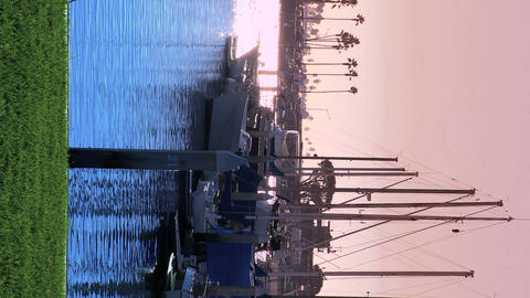 Vertical view of a marina at dusk Footage