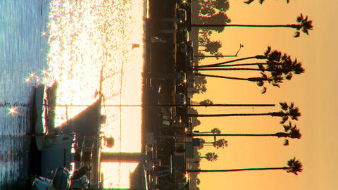 Vertical view of a marina at sunset Footage