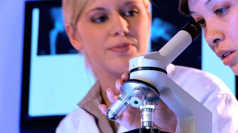 Western oriental & male caucasian healthcare staff using laboratory equipment Footage