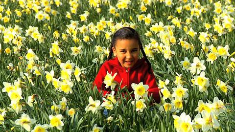 Girl Waving in Flower Field Stock Video Footage