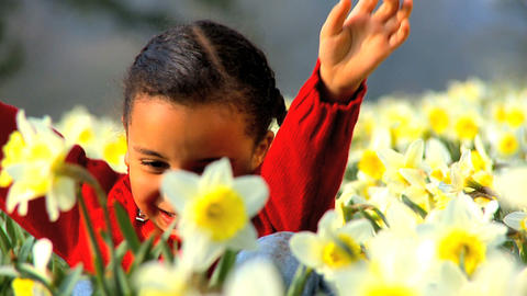 Playing in Flower Field Stock Video Footage