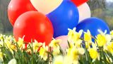 Girl And Balloons stock footage