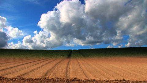 Dramatic time-lapse of clouds & crops growing in a field Footage