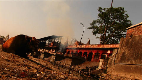 Ceremonial fire out of temple in nepal Stock Video Footage