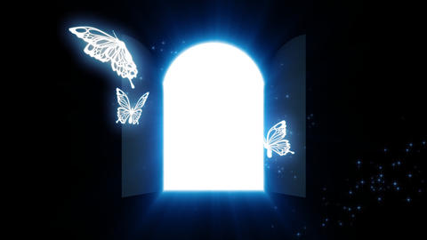 Door of the light Animation