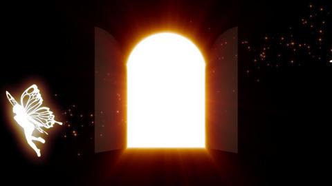 Door of the light Stock Video Footage