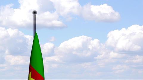 Animated Flag of Cameroon / Kamerun Stock Video Footage