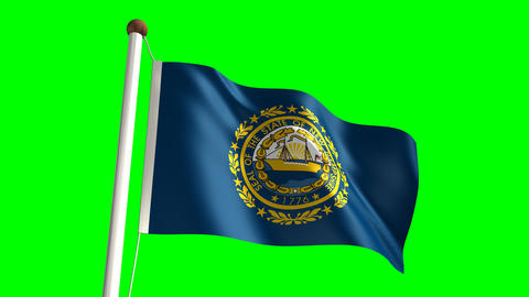 New Hampshire flag Stock Video Footage