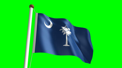 South Carolina flag Stock Video Footage
