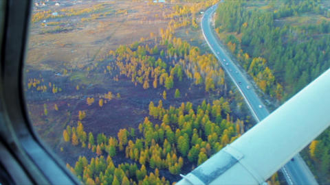 Autumn forest and road low fly aerial shot Stock Video Footage