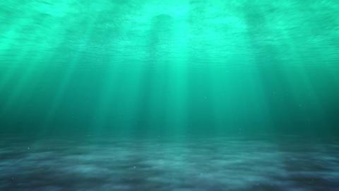 sea swim dirty Stock Video Footage