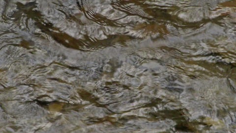 Close up at the surface of water Footage