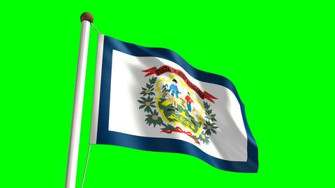 West Virginia Flag Stock Video Footage