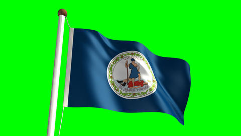 Virginia flag Stock Video Footage