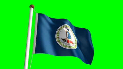Virginia flag Stock Video Footage