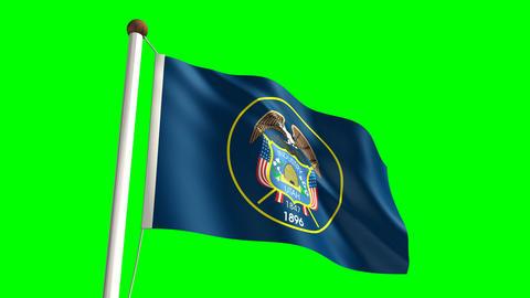 Utah flag Stock Video Footage