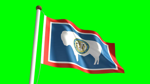 Wyoming flag Stock Video Footage