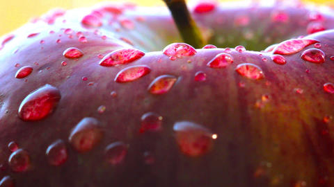 Rotating red apple macro Stock Video Footage