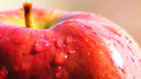 Rotating red apple macro Footage