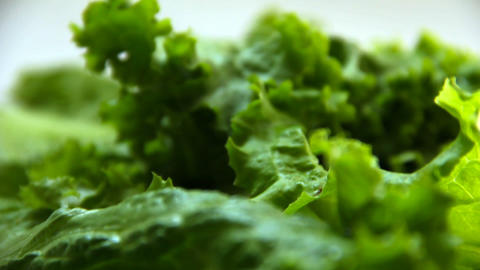 Dolly shot of green salad leaves Footage