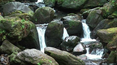 idyllic mountain stream in ireland Stock Video Footage