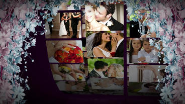 Wedding 028 stock footage
