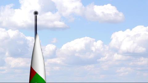 Animated Flag of Madagascar / Madagaskar Stock Video Footage