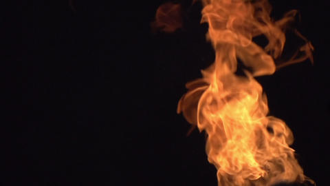 Fire on a black Background HD Stock Video Footage