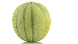 Cantaloupe melon Footage