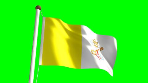 Vatican flag Stock Video Footage