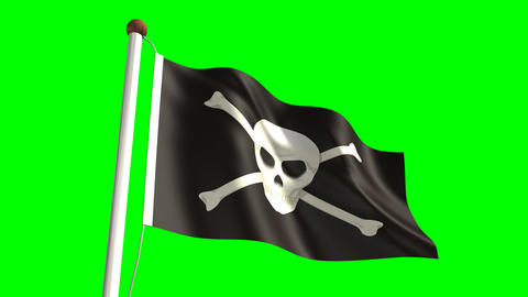 Skull Flag stock footage
