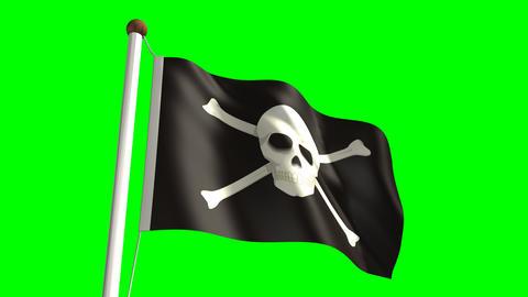 Skull flag Stock Video Footage