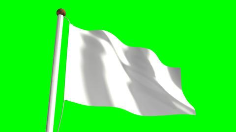 All White flag Animation