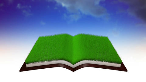 Book Opens Animation