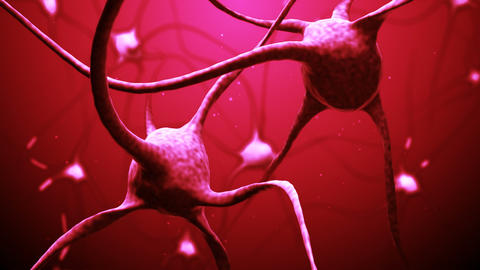Neurons Stock Video Footage
